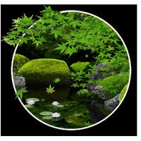 Zen Garden -Summer- ライブ壁紙