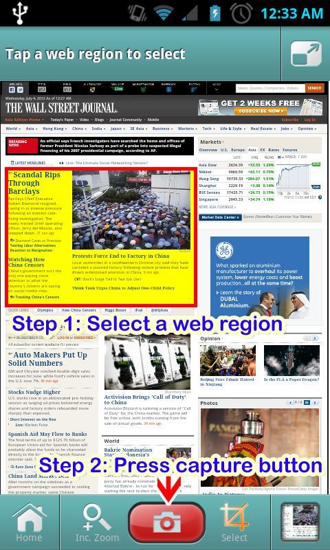 Websnap-Webcapture,Webwidget