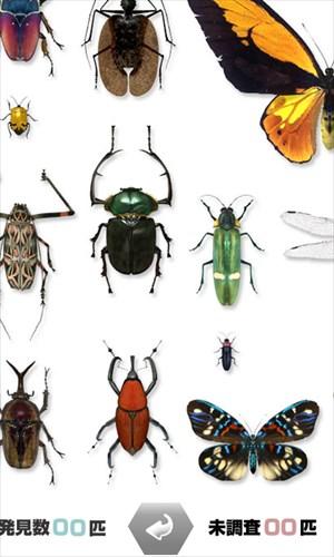 世界の昆虫採集ライト版