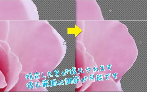 写真を合成-背景透過・背景透明で合成写真-