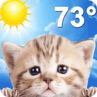 お天気ネコ (Weather Kitty)