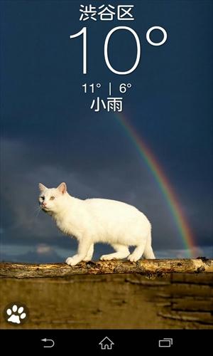 お天気ネコ(WeatherKitty)