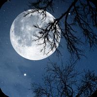 自然音 – 夜をリラックス