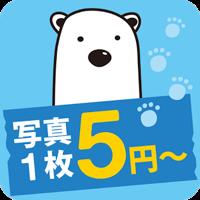 しろくまフォト – 5円写真プリント for Android