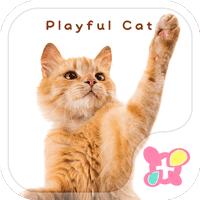 かわいい壁紙・アイコン-PLAY CAT-無料きせかえ