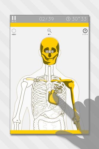 あそんでまなべる人体模型パズル