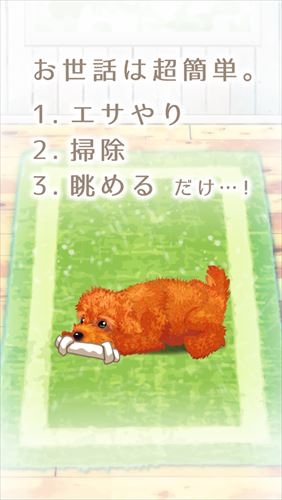 癒しの子犬育成ゲーム〜トイプードル編〜