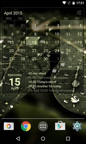 CalendarWidget:Month+Agenda