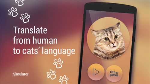 TranslatorforcatsSimulator