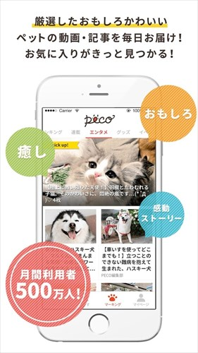 PECO(ペコ):いぬねこペット動画かわいいどうぶつ動画で癒しをお届け