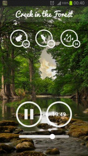 ForestSounds–Nature&Sleep