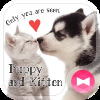 かわいい壁紙アイコン 子犬と子猫 無料
