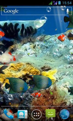 水族館3Dライブ壁紙