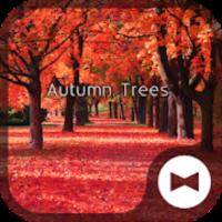 秋壁紙アイコン 並木の紅葉 無料