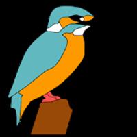 野鳥検索図鑑