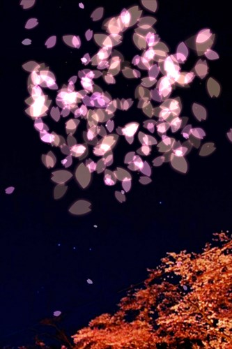 素敵な花火であなたに癒しを♪HANABI-花火-