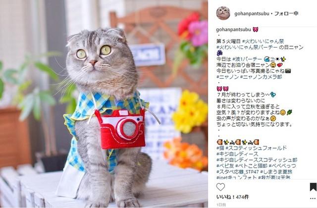 【300円OFFのクーポンGET!】「夏を感じる写真」を共有しよう?