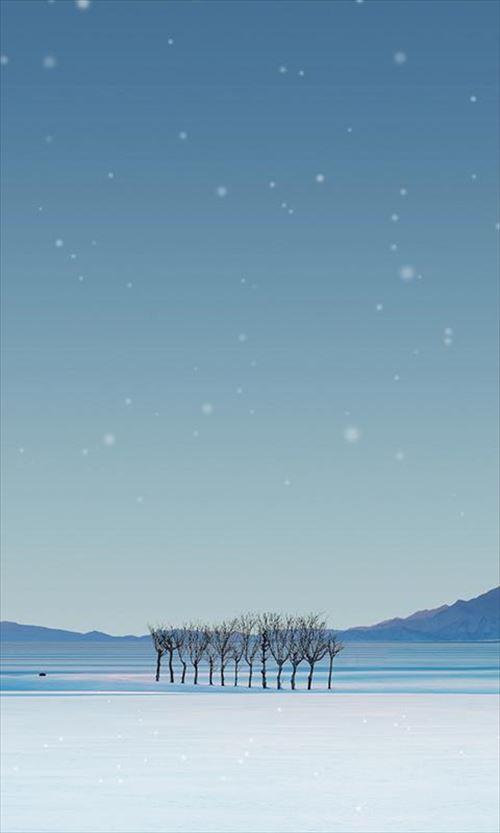 深雪の白田ライブ壁紙