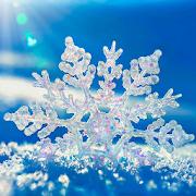 冬の雪ライブ壁紙