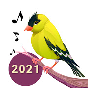 鳥の歌 着信音