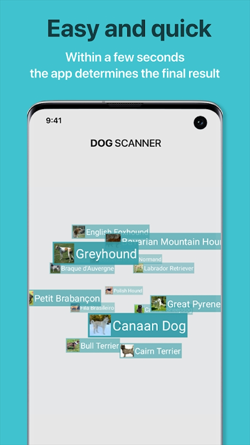 DogScanner–犬種の識別